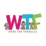 pet business logo design for WTF