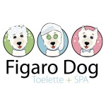 Dog grooming logo design for Figaro Dog - Italy