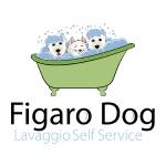 pet grooming logo design for Figaro Dog - Italy