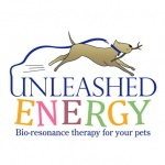 pet business logo design for Unleashed Engergy