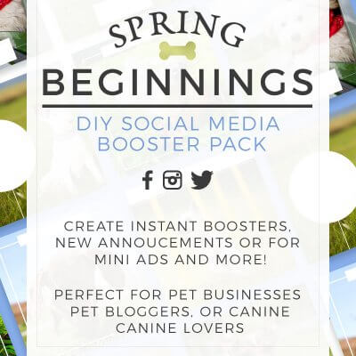 DIY Spring Themed Social Media Pack for Pet Businesses and Petpreneurs for sale by Sniff Design