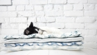 DIY Stylish Cat Bed-2