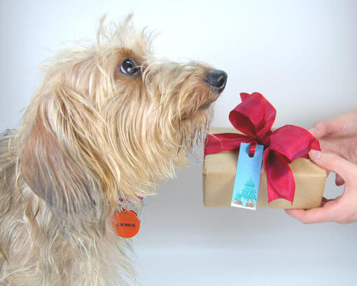 animal-themed-christmas-gift-tag-set-with-mia1