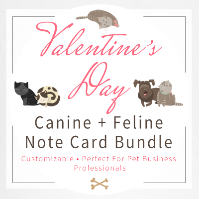Cover-Image-For-Valentine's-Note-Card-Set-by-Sniff-Design-Studio